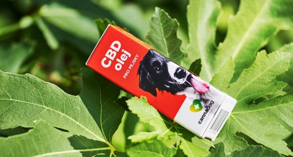CBD olej 3 % od Cannadog vyrobený v ČR